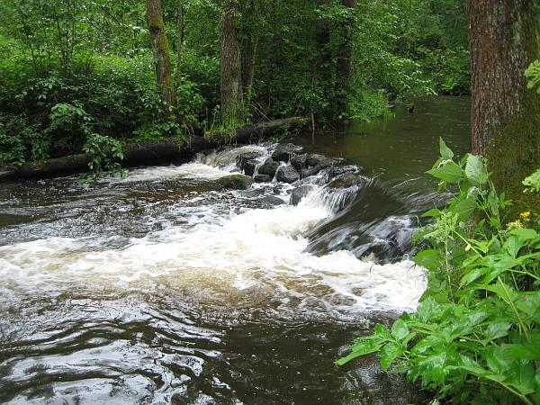 Plaukimas baidarėmis Grūdos upe